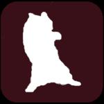 Becker cats adventures Apk