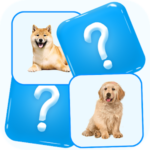 Match Picture Memory Game APK