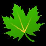 Greenify Pro Apk XDA