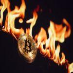 Fox Bitcoin Cloud Mining 2021 Pro Edition Apk