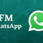 FM Whatsapp 8.30 Download APK